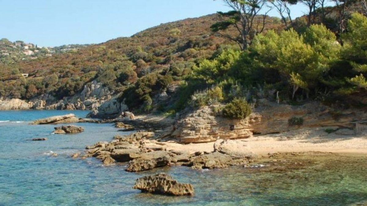 Stage résidentiel sur l'Île naturiste du Levant - 4 jours